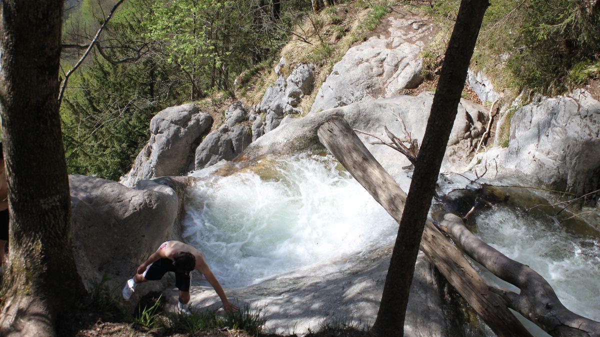 Gumpe am Königsbach-Wasserfall.