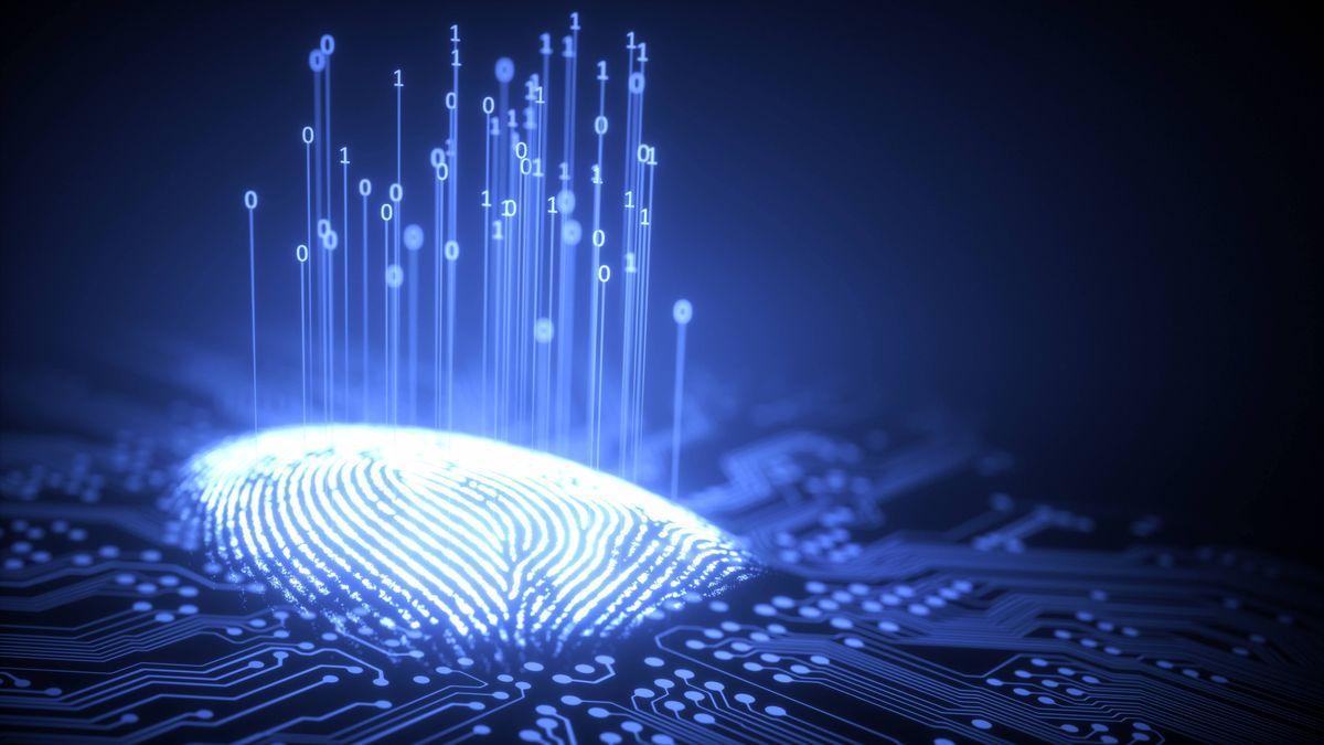 In der Europäischen Union ein eigenes Ökosystem digitaler Identitäten aufgebaut werden.