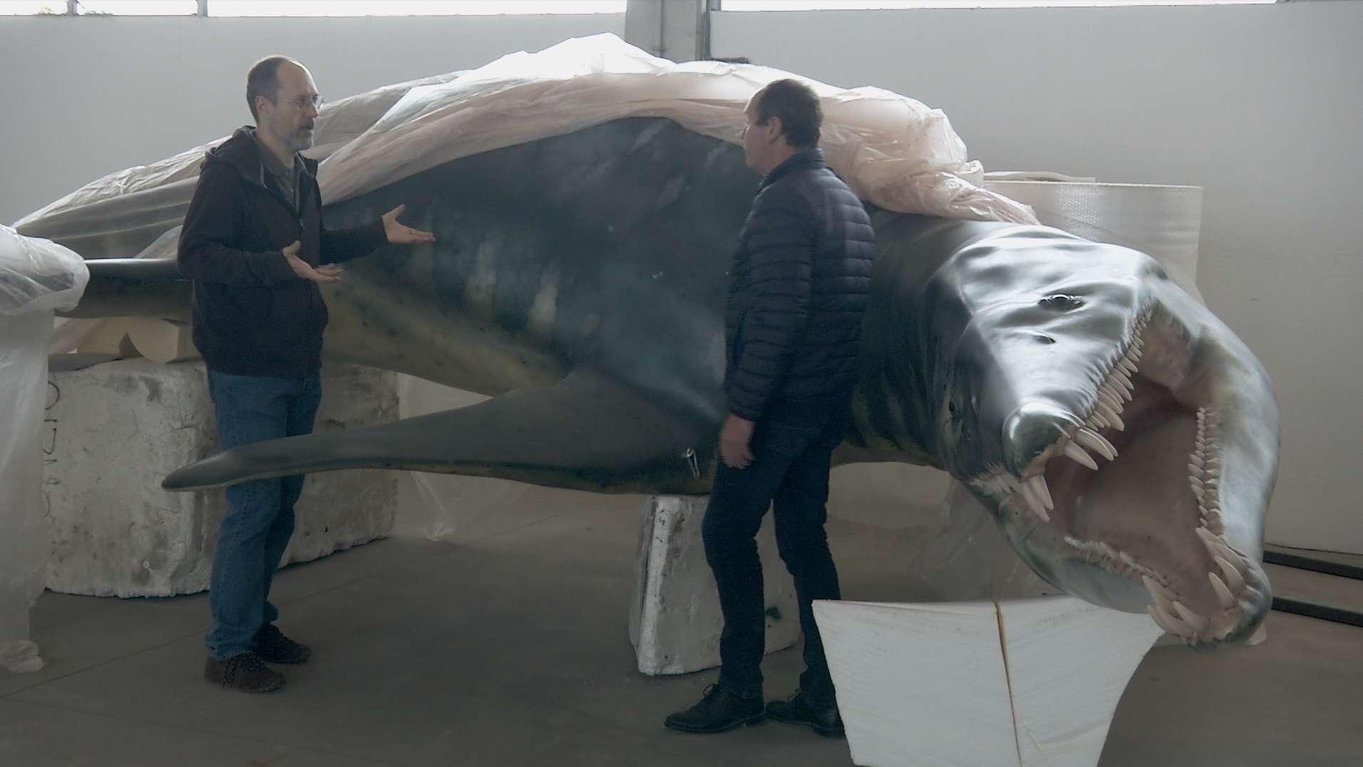 In einer Werkstatt nahe Venedig wird ein Liopleurodon nachgebaut.