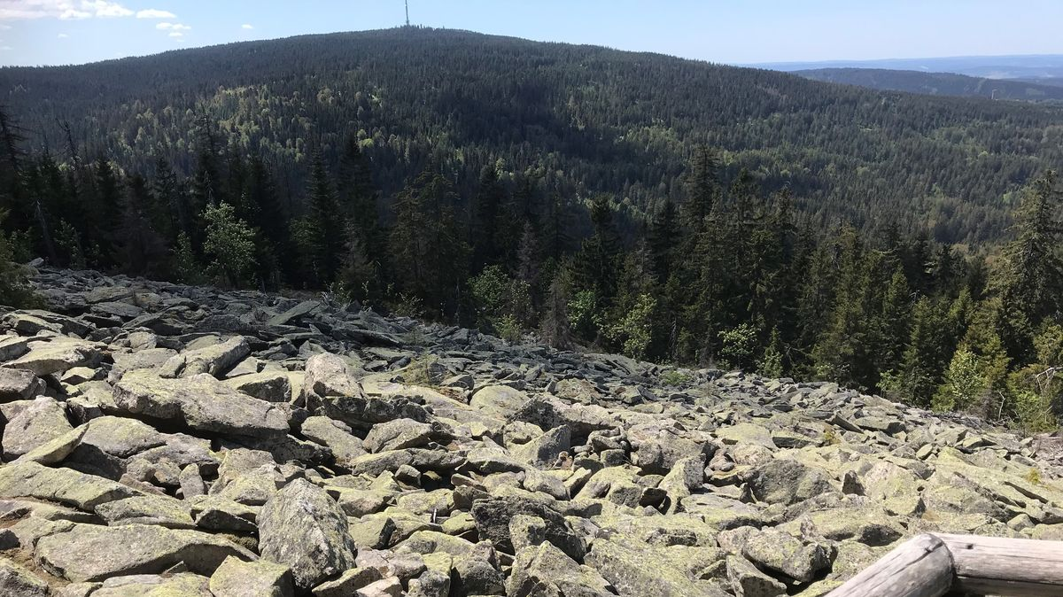 Ein Hang mit Granitbrocken, dahinter dunkler Wald mit dem Ochsenkopf, auf dem ein Fernsehturm steht.