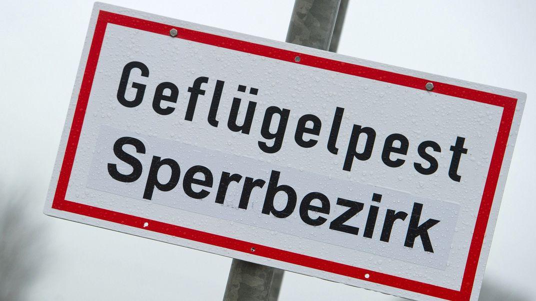 """Warnschild """"Geflügelpest Sperrbezirk"""" (Symbolbild)"""