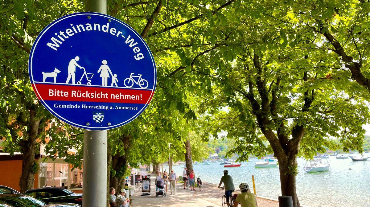 """Ein rundes Schild mit der Aufschrift """"Miteinander-Weg"""" und """"Bitte Rücksicht nehmen"""". Darauf sind Symbole zu sehen: Mann mit Rollator, Frau mit Kind, Rad, Hund."""