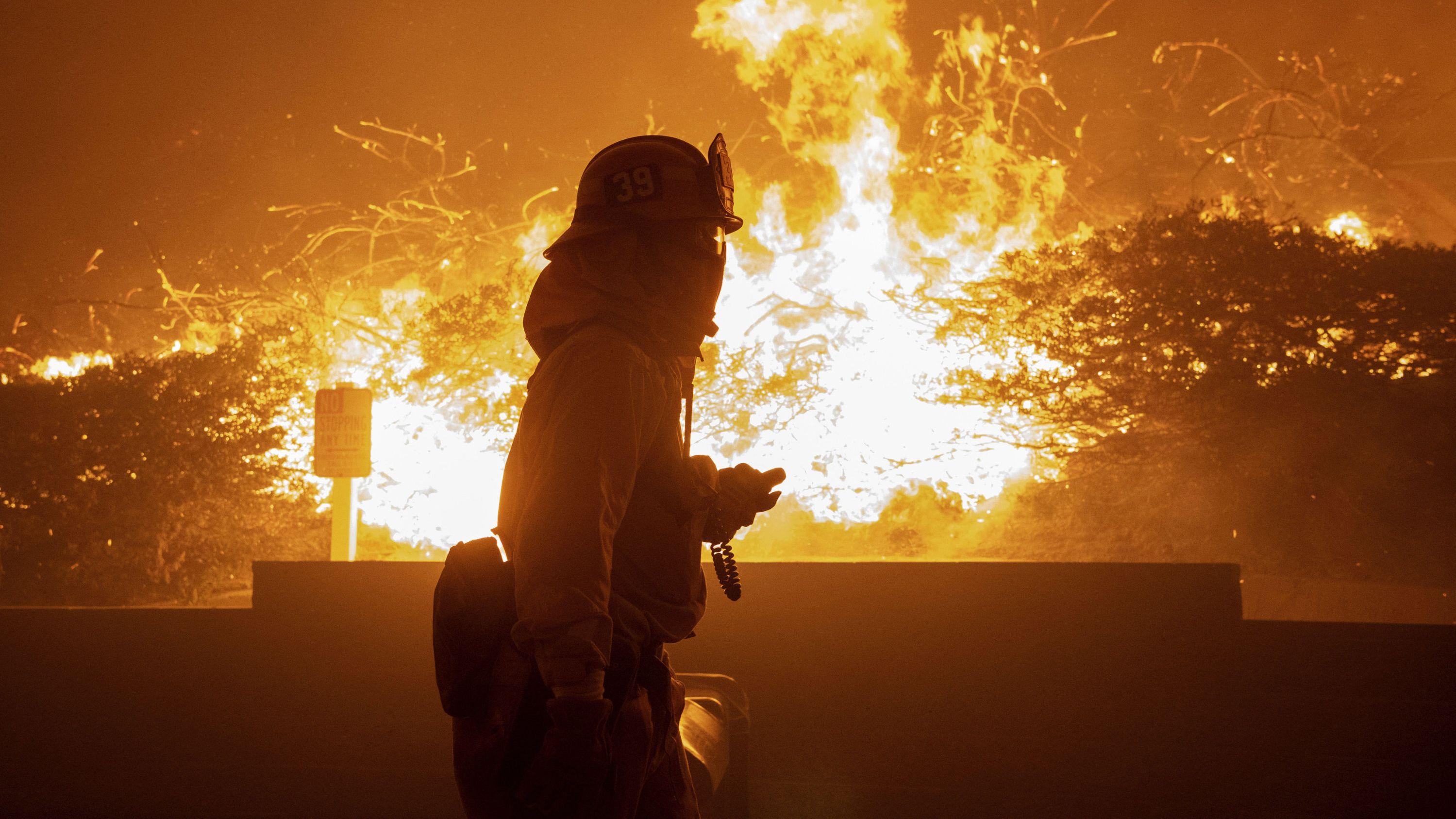 Ein Feuerwehrmann geht in Los Angeles an brennenden Bäumen vorbei (11.10.19).