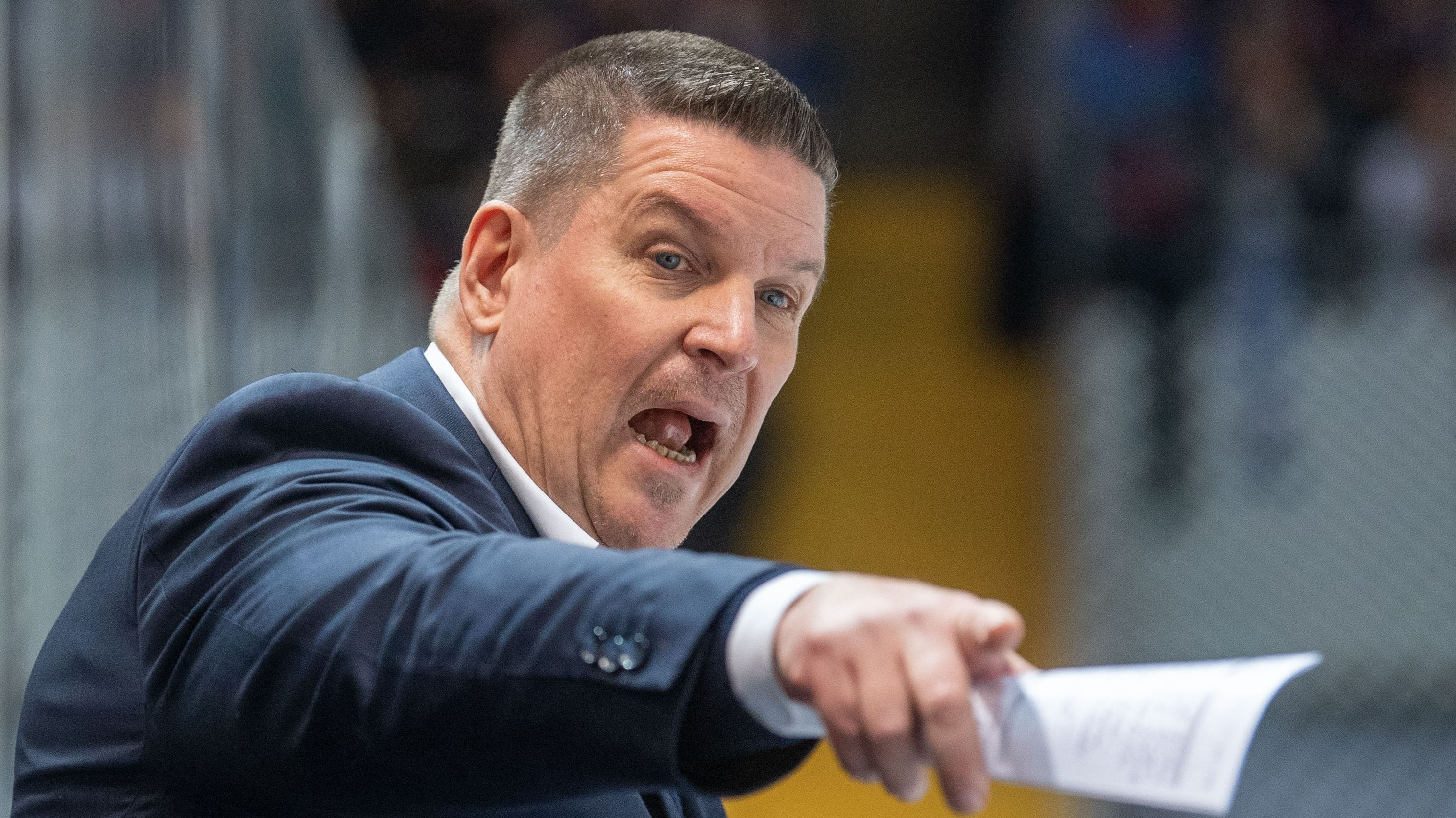 """Straubing Tigers Headcoach Tom Pokel ist zum """"Trainer des Jahres"""" gewählt worden."""