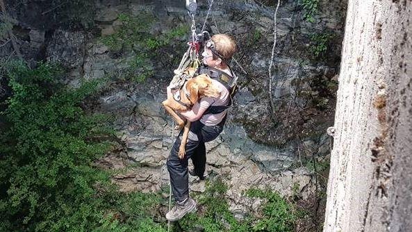 Der Rettungshund wurde mit einem Tragekorb aus der Tiefe geholt.