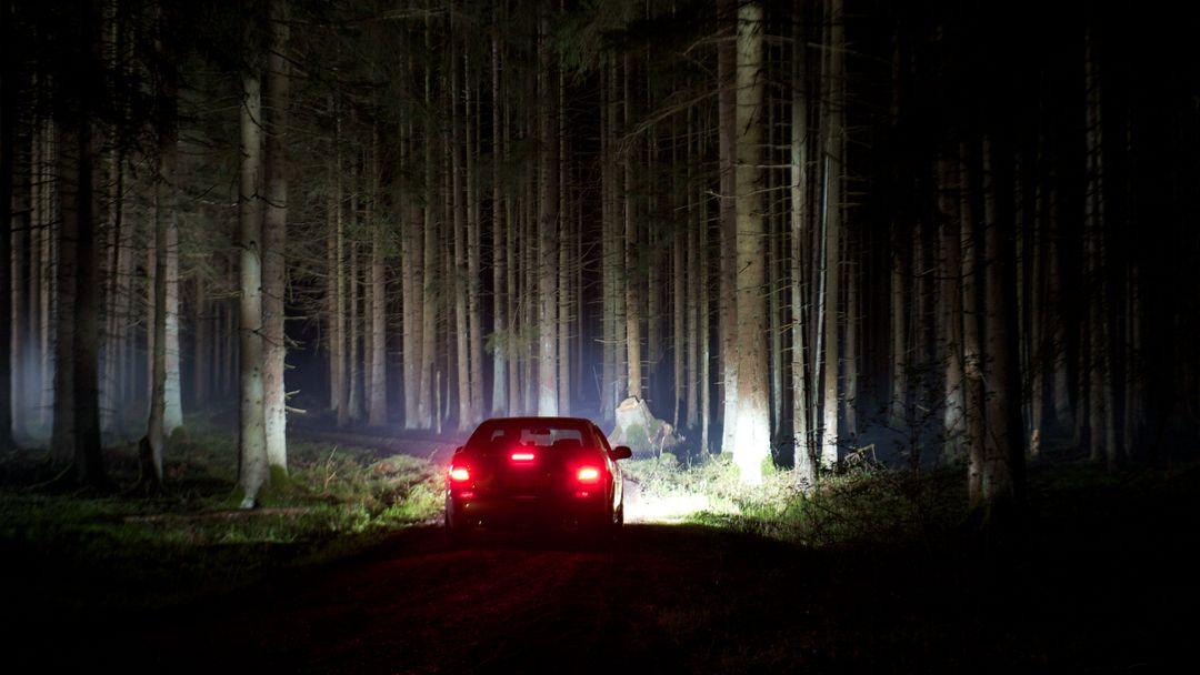 Auto im nächtlichen Wald (Symbolbild)
