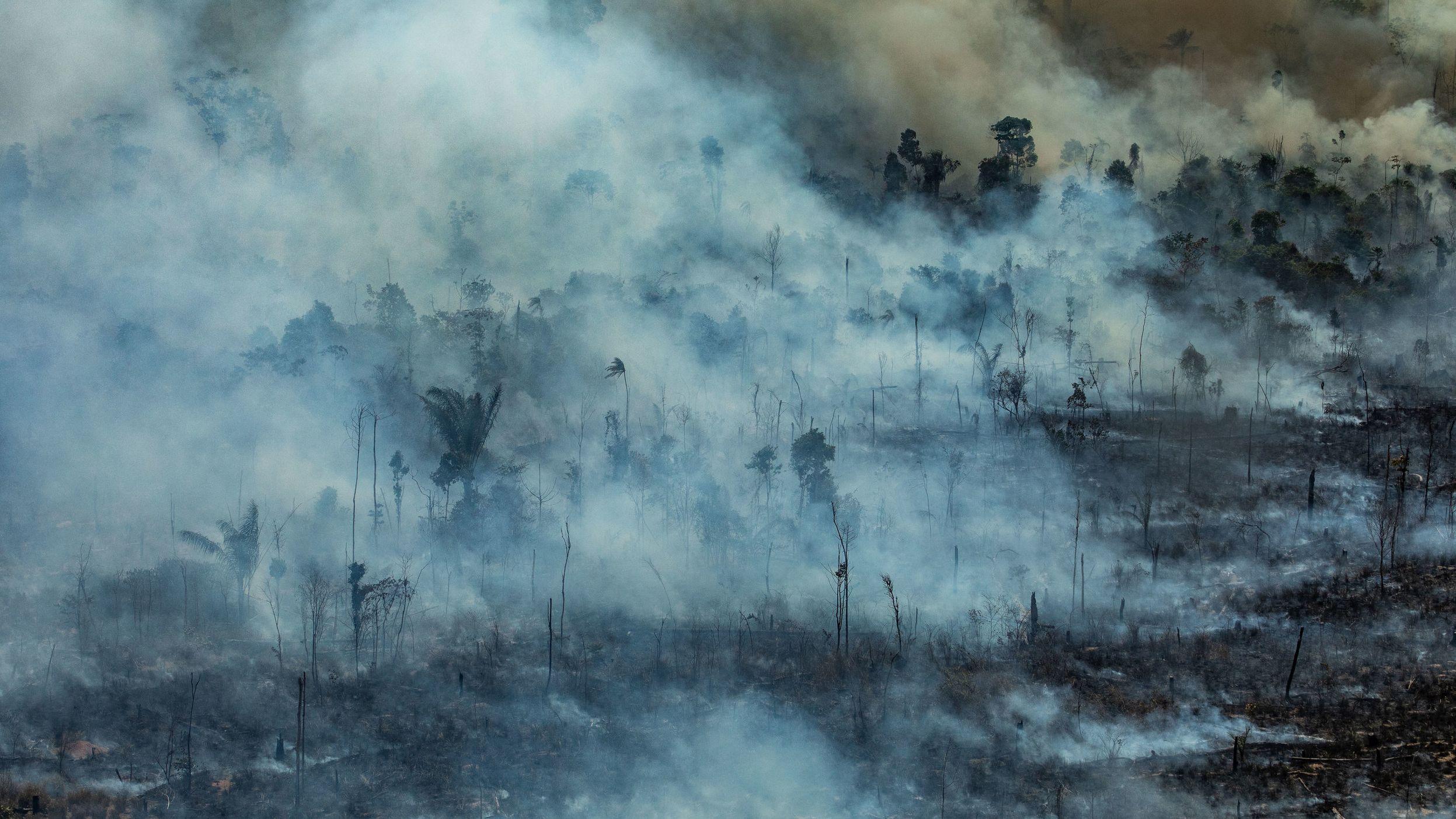 Auf diesem von Greenpeace Brasilien zur Verfügung gestellten Bild steigt Rauch aus einem verbrannten Feld in Jamanxim nahe Stadt Novo Progresso.