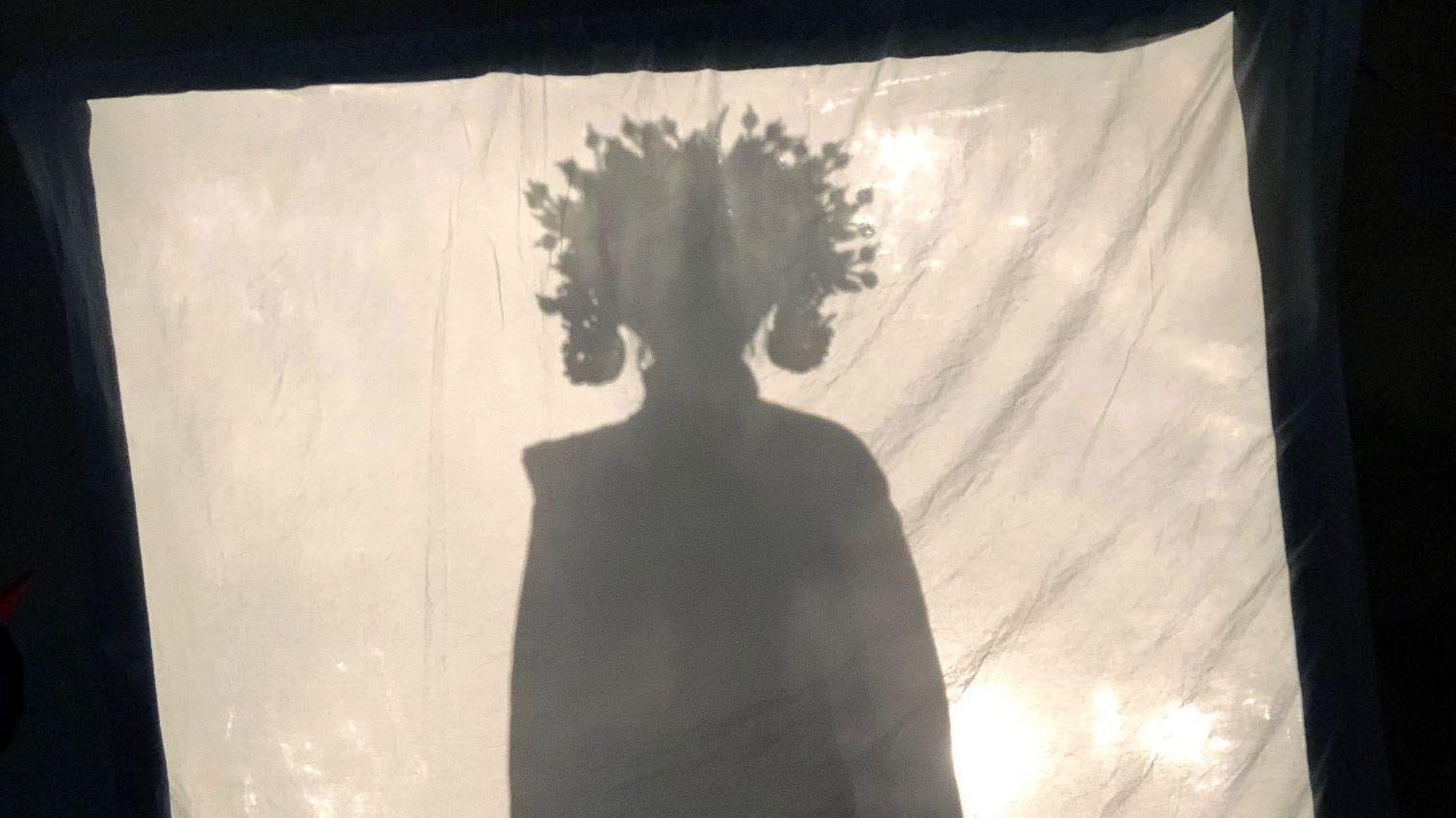 Mehr als einen Schattenriss gab es von der Dietfurter Drachenprinzessin noch nicht zu sehen. Wer hinter der Figur steckt, ist noch geheim.