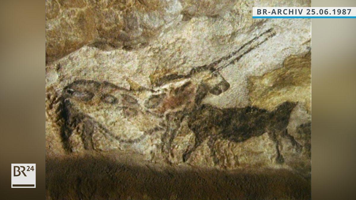 Tierzeichnungen in der Höhle von Lascaux