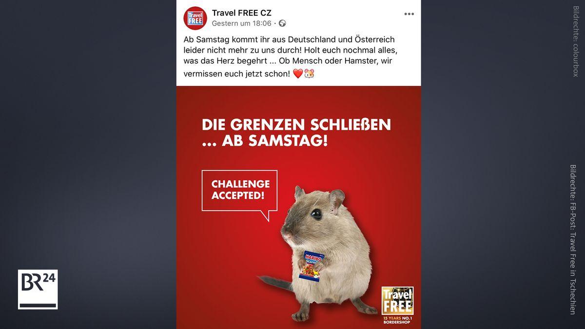Screenshot Facebook Post Travel Free in Tschechien