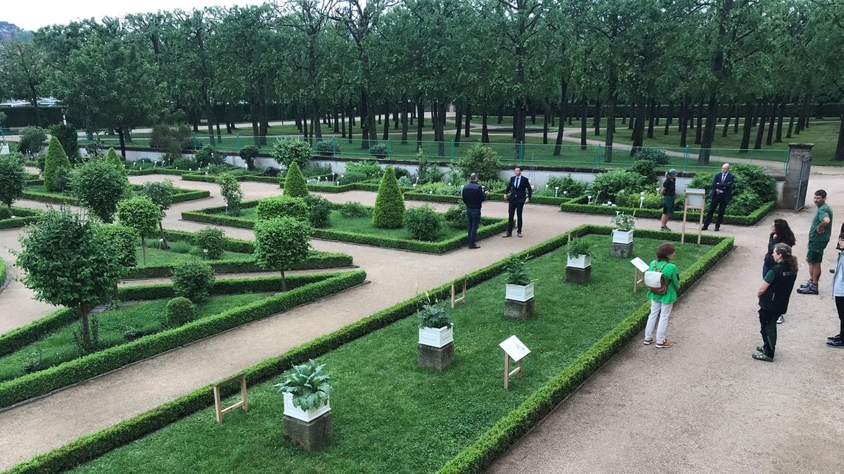 "Ausstellung im Leonhart-Fuchs-Garten Ansbach: ""Heilende Gifte"""
