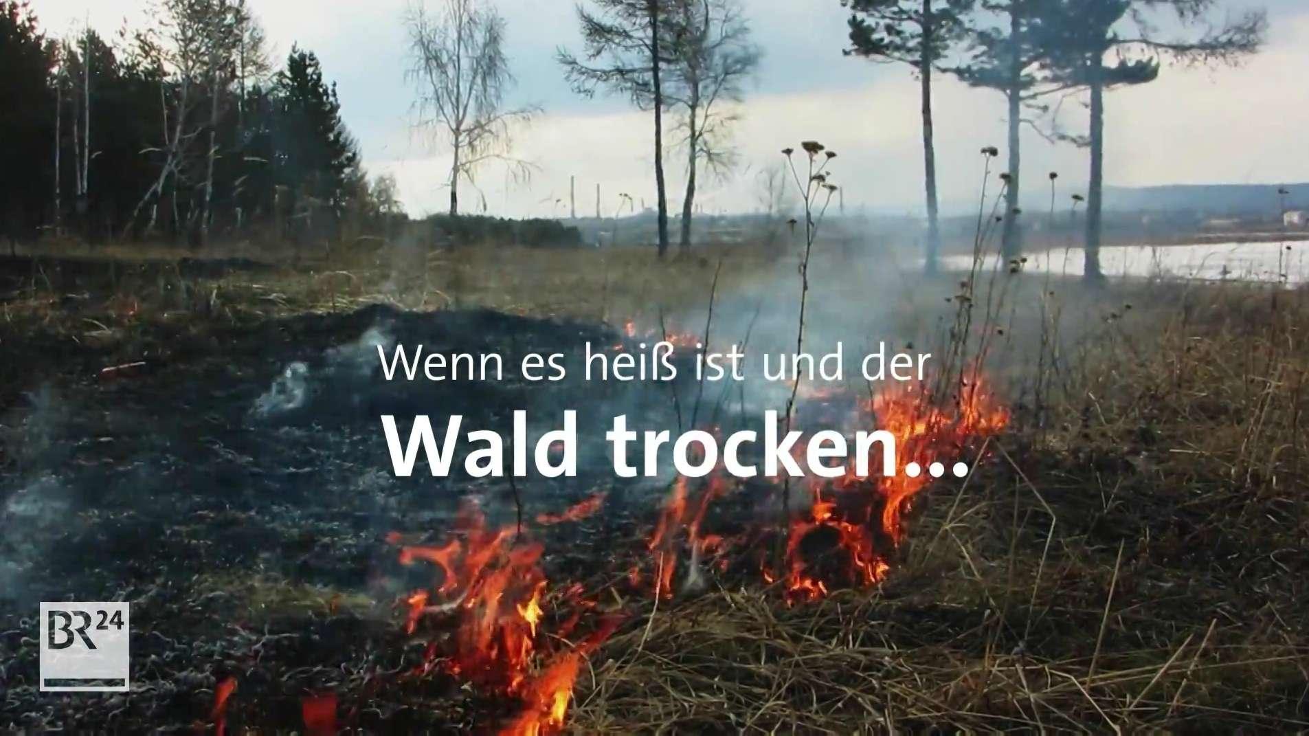 Feuer am Waldrand