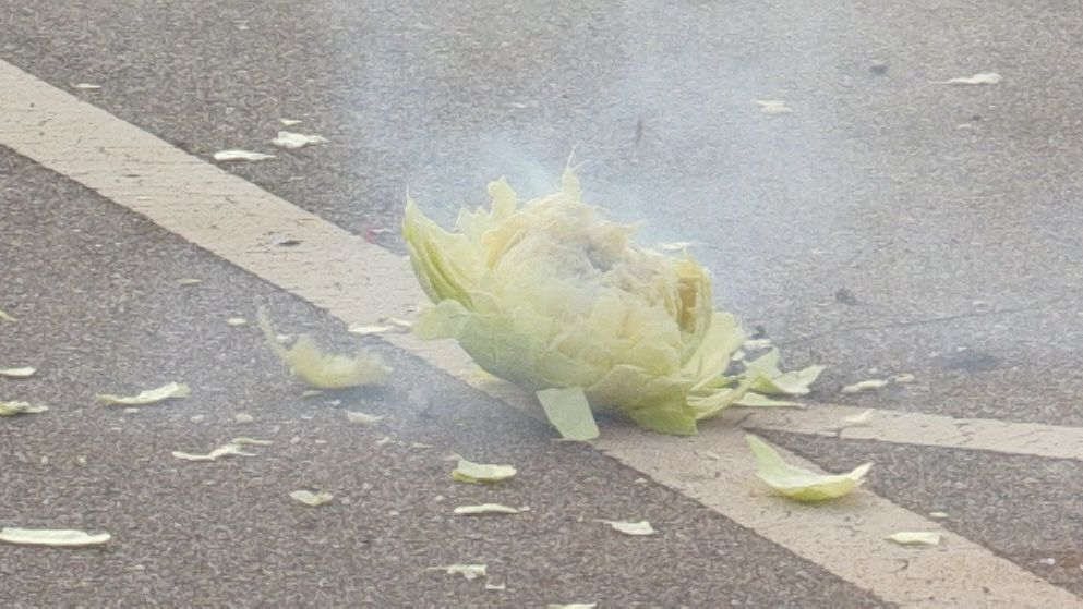 Dieser Kohlkopf ist mit einem illegal eingeführten Böller gesprengt worden.