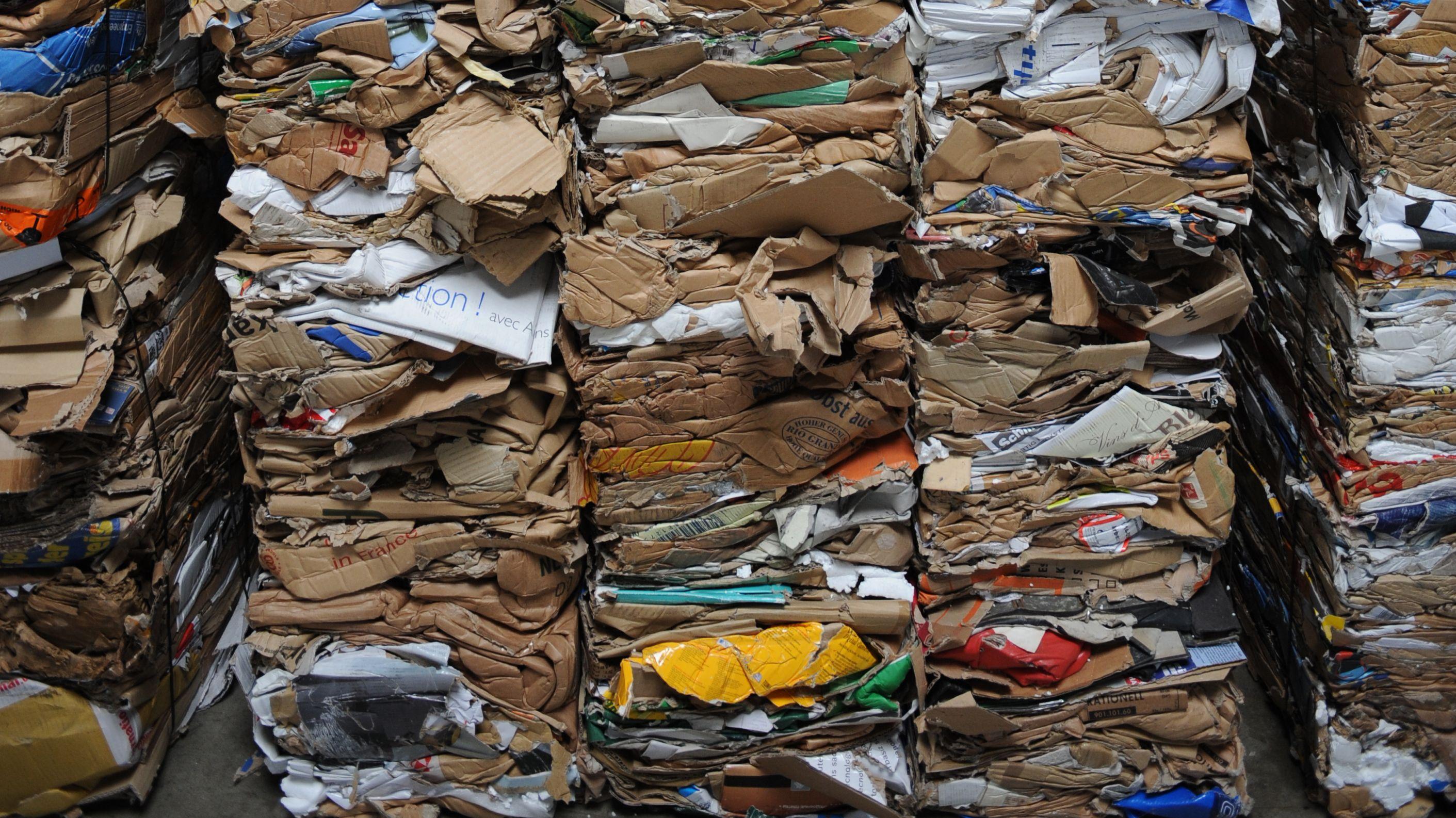Gepresste Papierstapel auf einem Recyclinghof in Freiburg.