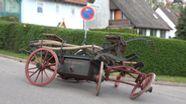 Schwerer Unfall mit Kutsche bei Umzug in Gräfensteinberg   Bild:Br