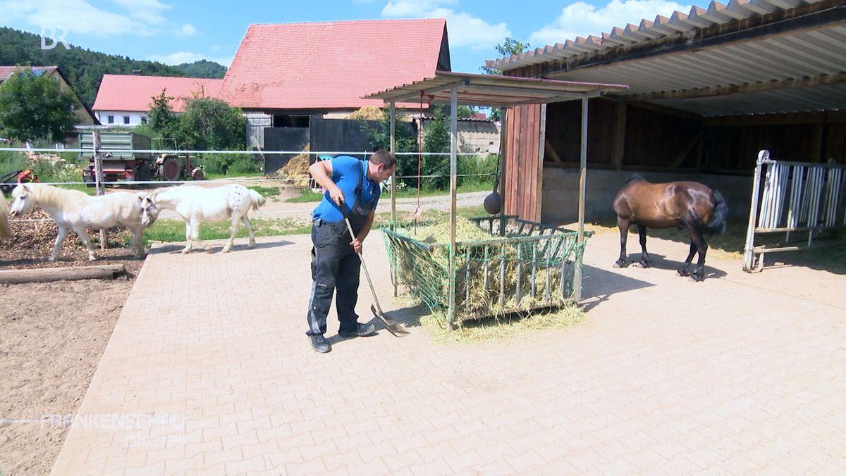 Ein Landwirt steht vor einem Futtertrog mit Heu, dahinter ein Pferd.