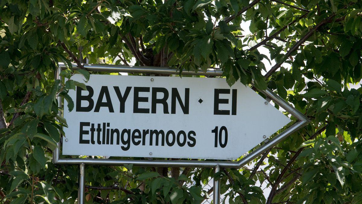 Bayern Ei