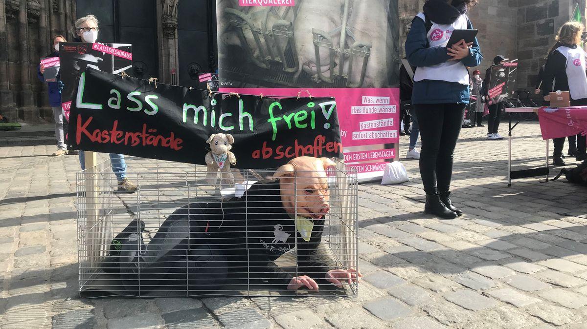 Ein Mensch mit einer Schweinemaske sitzt in einem Käfig vor der Nürnberger Lorenzkirche.