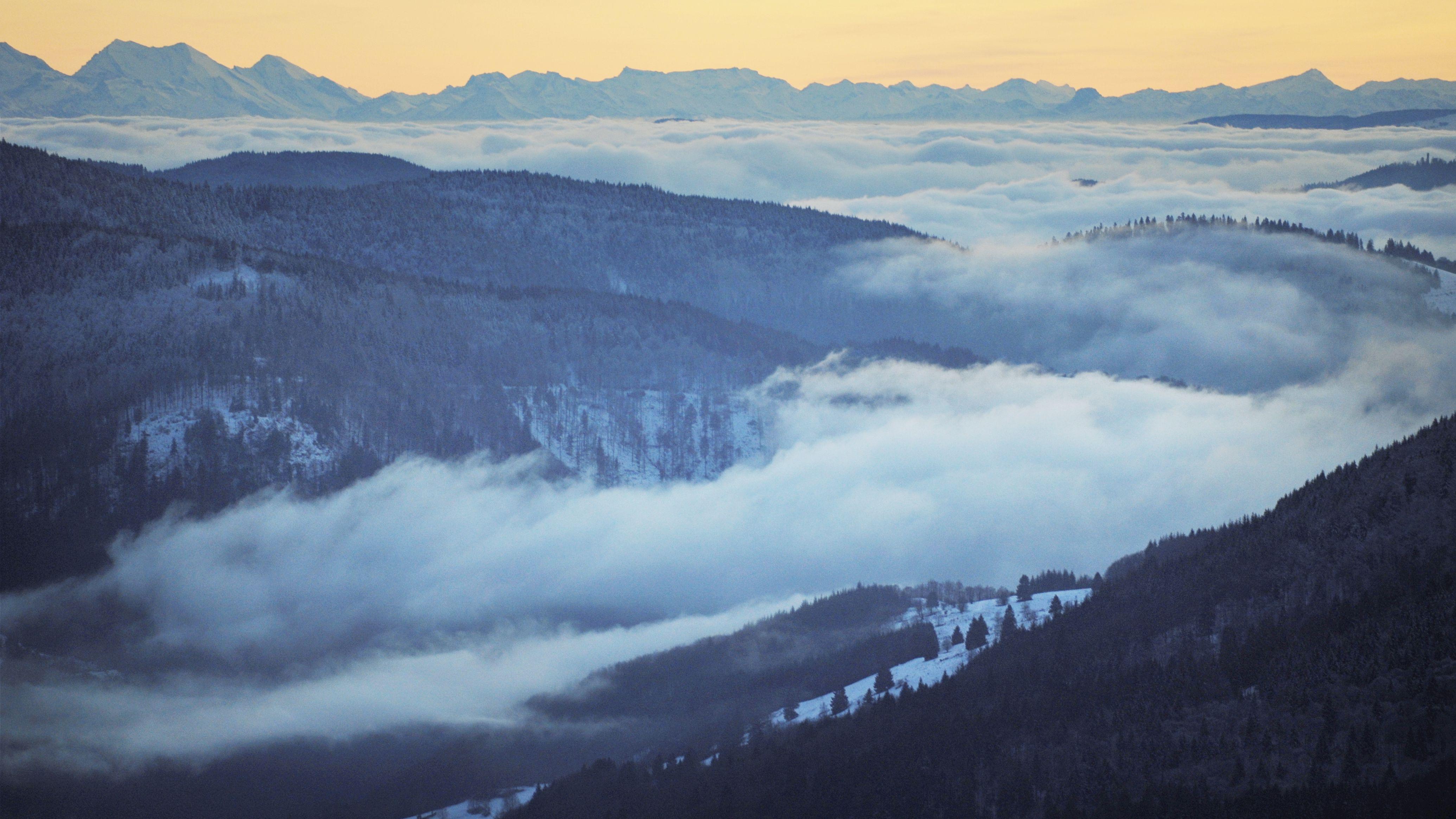 Blick von Martin Heideggers Hütte in Todtnauberg über die weite neblige Landschaft, Wald, am Horizont Berge