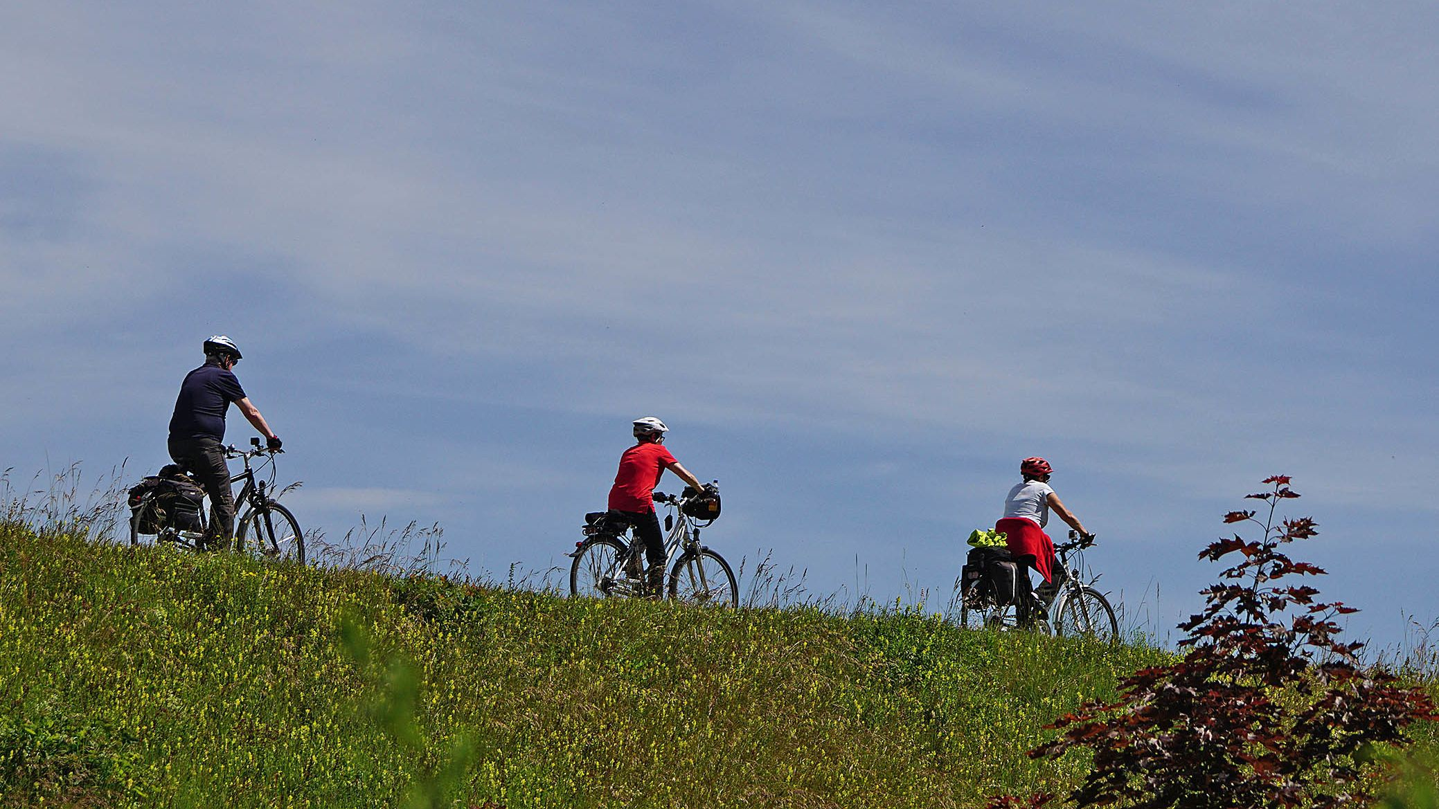 Fahrradfahrer auf einer Radtour - Symbolbild