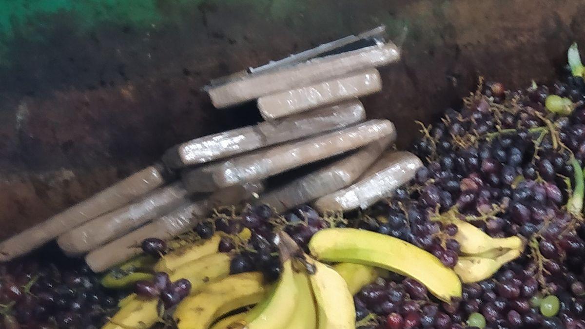 Kokain im Wert von rund einer Million Euro haben Mitarbeiter eines Logistik-Unternehmens in Erding im Biomüll gefunden.