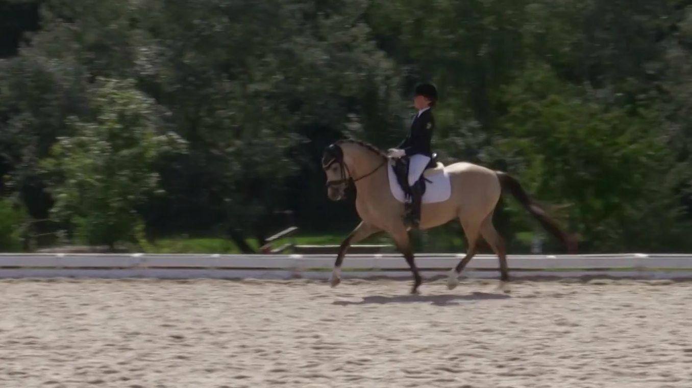 Landesponyturnier in Ansbach: Junge Reiterin mit ihrem Pferd bei der Übung.