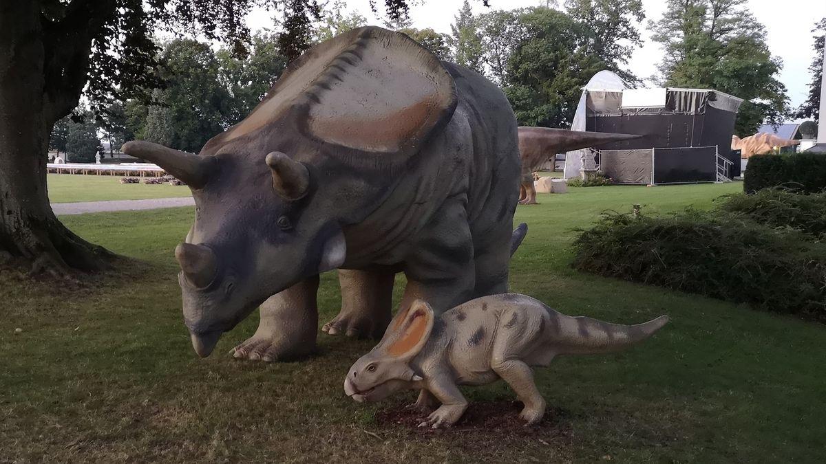 Vorne im Bild: das verschwundene Dino-Baby