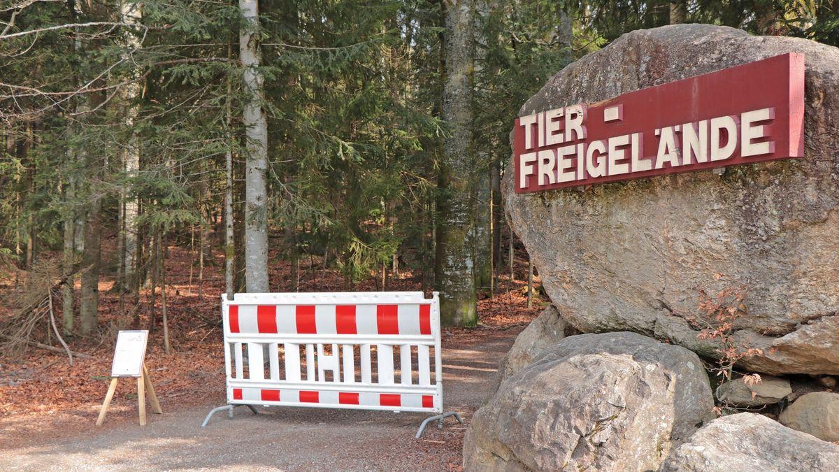 Tier-Freigelände im Nationalpark Bayerischer Wald geschlossen