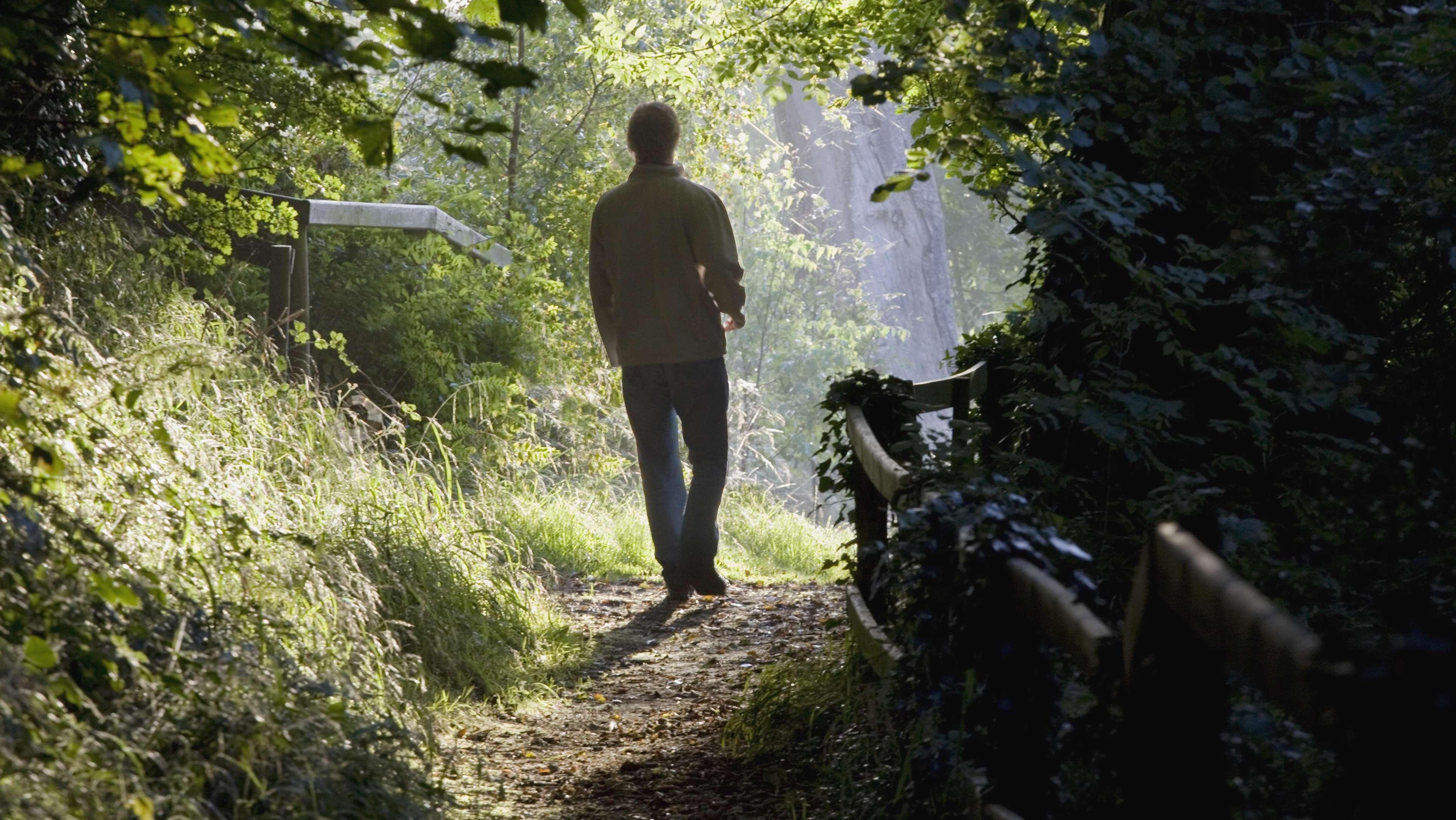 Mann geht im Wald spazieren