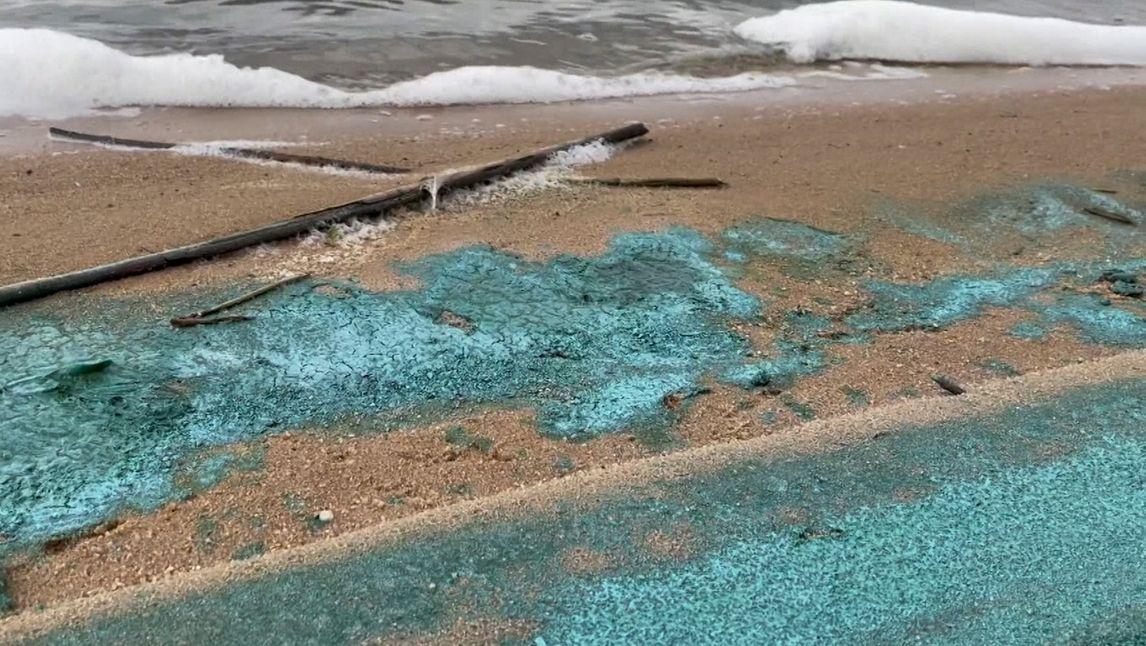 Blaualgen am Altmühlsee