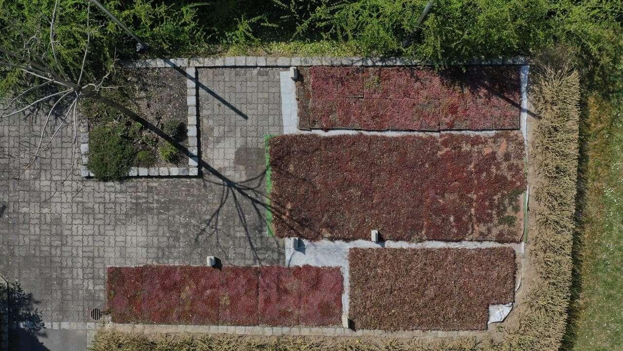 Testflächen für Bepflanzung