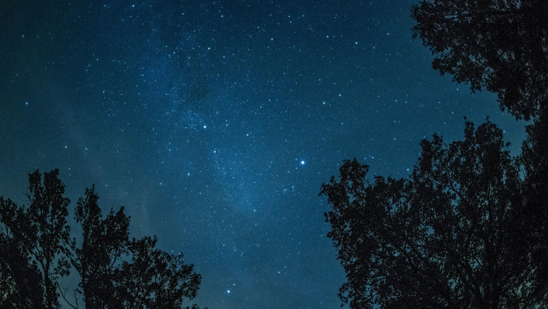 Blick in den Sternenhimmel.