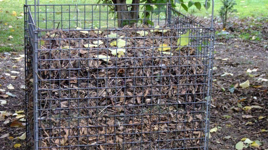 Kompostgitter mit Laub