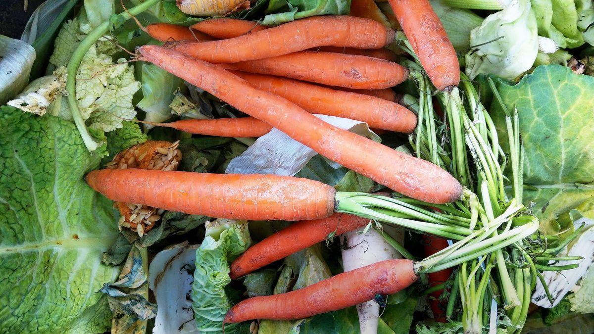 Gemüse in einer Mülltonne.