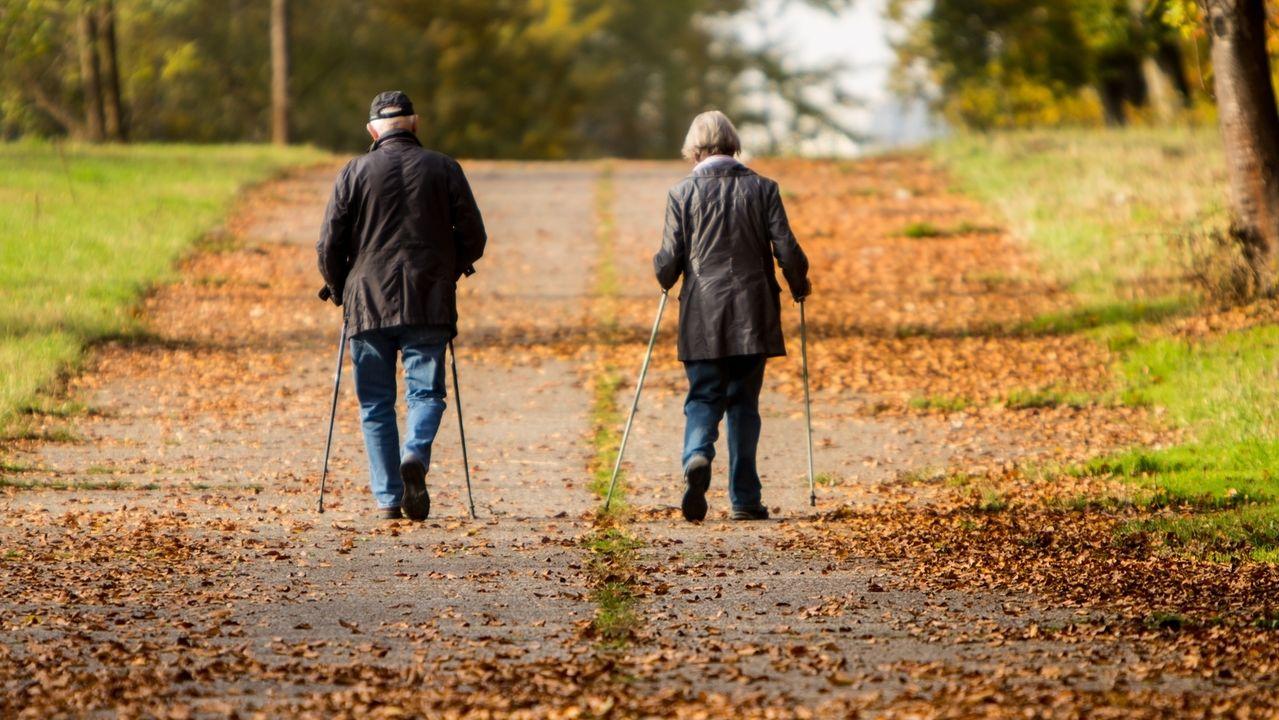 Zwei Senioren, die mit Walking-Stöcken einen mit Laub übersäten Weg entlang laufen.