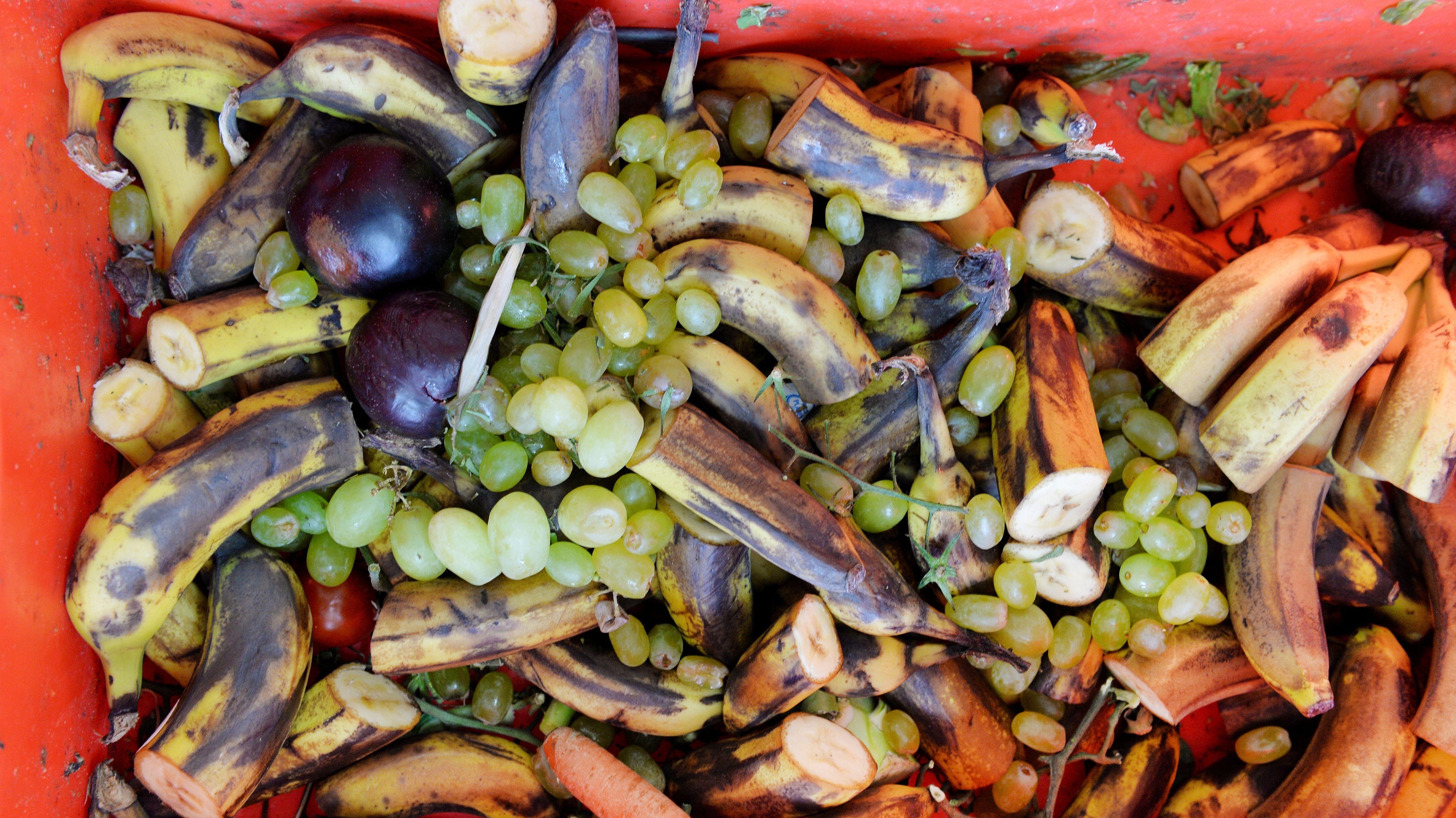 Weggeworfene Lebensmittel in einer Kiste