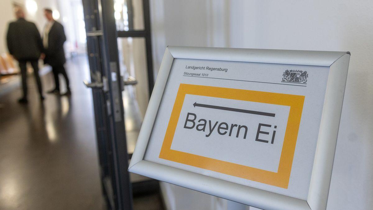 Sechs Jahre nach dem Salmonellen-Skandal um die niederbayerische Firma Bayern-Ei ist der frühere Geschäftsführer verurteilt worden.
