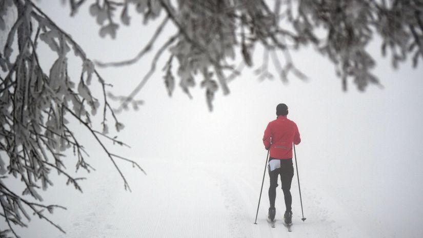 Ein Langläufer fährt an verschneiten Bäumen vorbei.