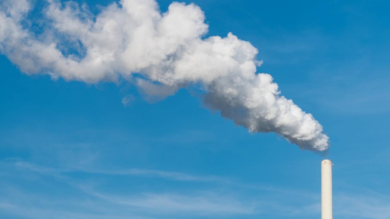 Klimaschutz (Symbolbild)