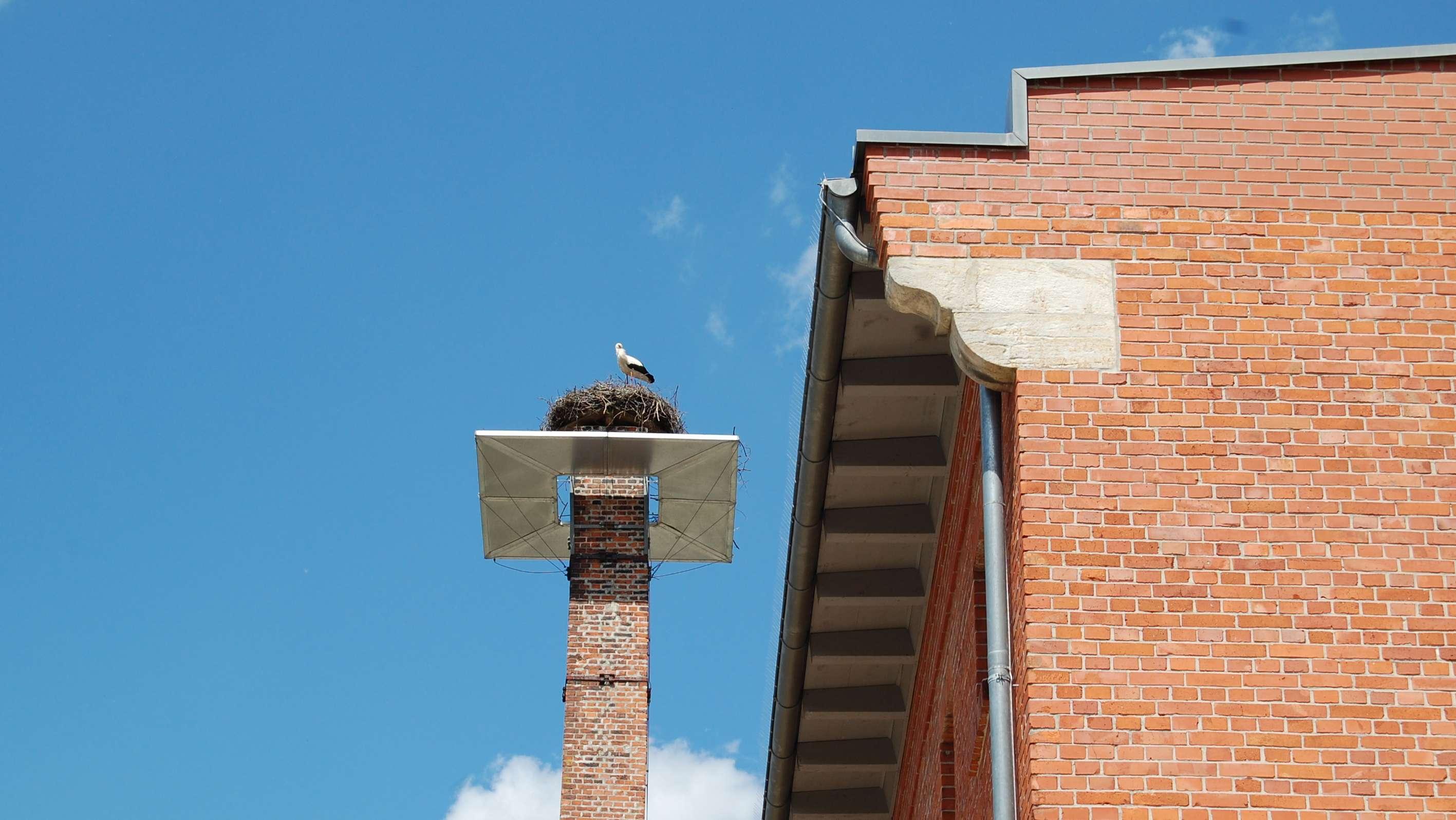 Storch sitzt im Storchennest auf dem Schlot der ehemaligen Brauerei in Oberkonnersreuth