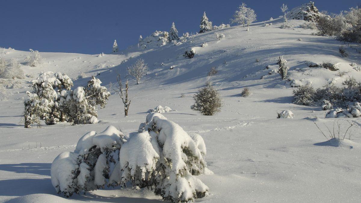 Verschneite Rhön-Landschaft