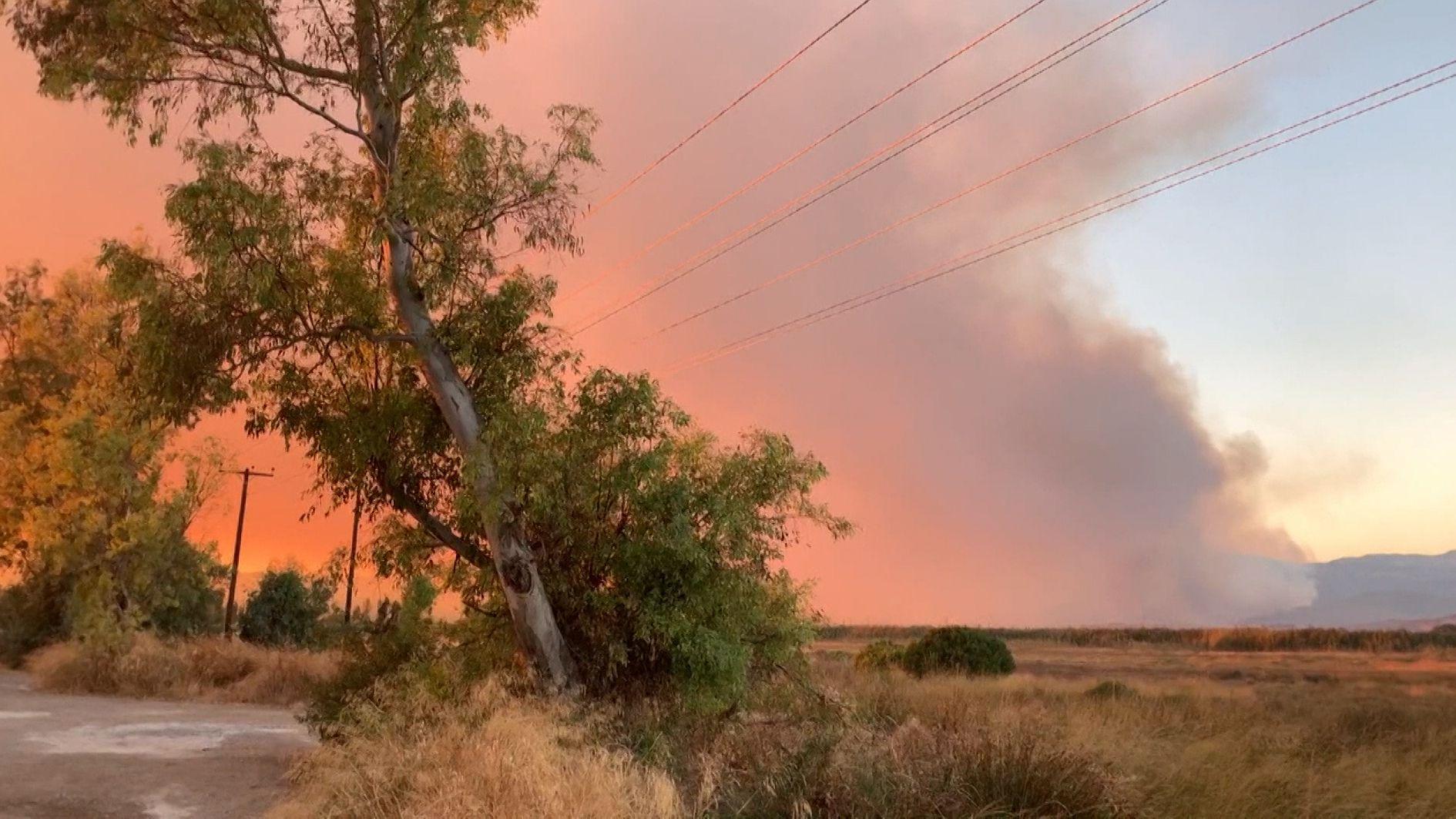 Waldbrände auf Euböa dauern an