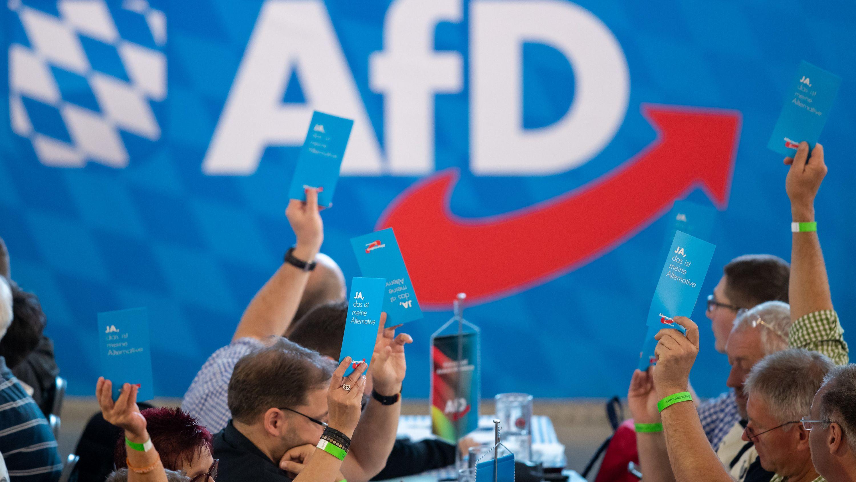 Parteimitglieder der AfD heben während des bayerischen Landesparteitags ihre Stimmkarten hoch.