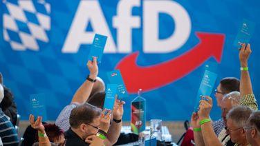 Parteimitglieder der AfD heben während des bayerischen Landesparteitags ihre Stimmkarten hoch. | dpa-Bildfunk/Daniel Karmann
