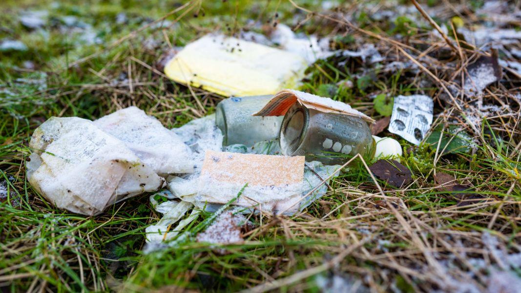 Illegale Müllentsorgung: viele Menschen schmeißen ihren Abfall einfach in die Natur