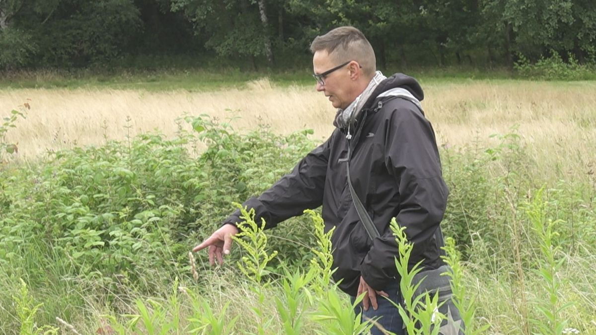 Insgesamt neun Naturschutzwächter arbeiten im Landkreis Ansbach. Einzige Frau im Team ist Manuela Maier.