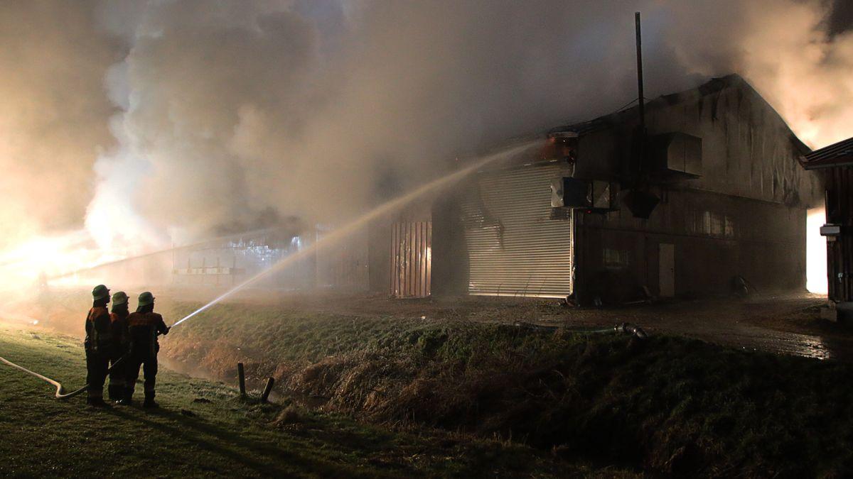 Feuerwehrleute versuchen den Brand in einer landwirtschaftlichen Halle mit einer Photovoltaikanlage zu löschen (Symbolbild).