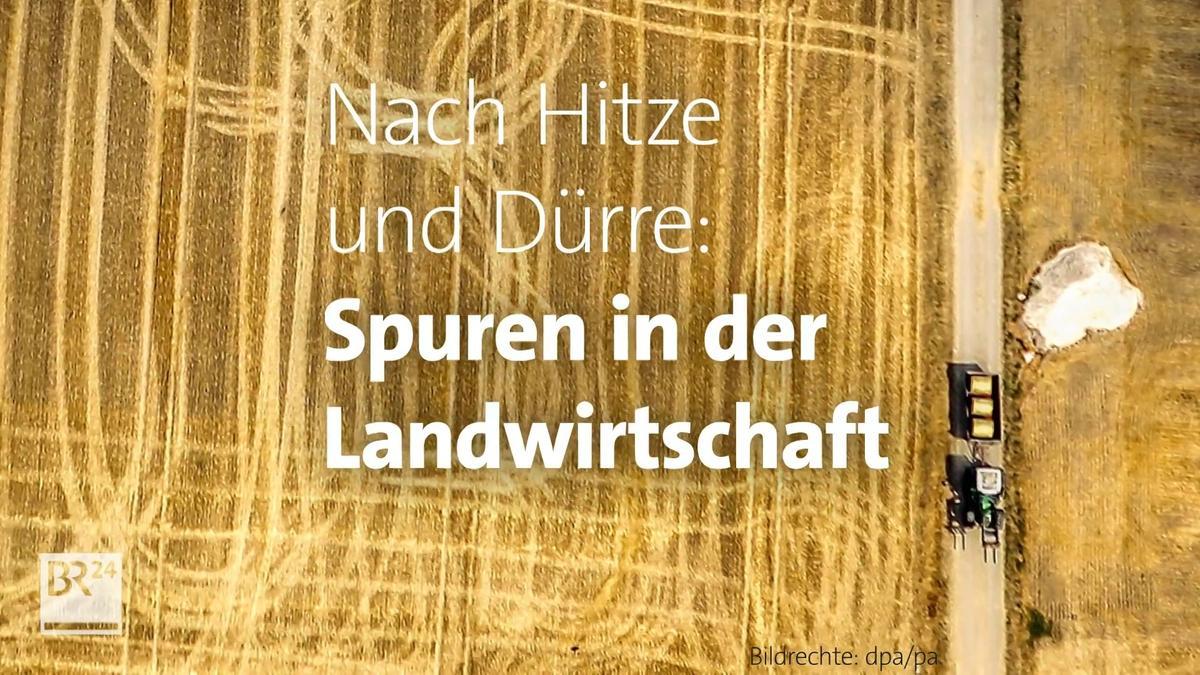 -fragBR24-Hitze-und-D-rre-Spuren-in-der-Landwirtschaft