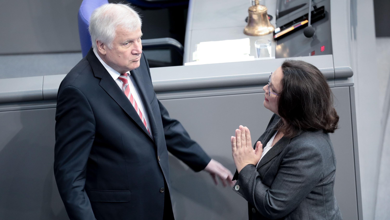 CSU-Chef Horst Seehofer und SPD-Chefin Anrea Nahles im Bundestag