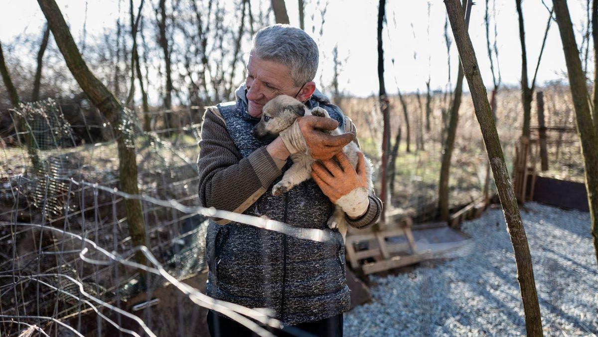 Das Bild zeigt einen Welpen auf dem Arm des Tierretters
